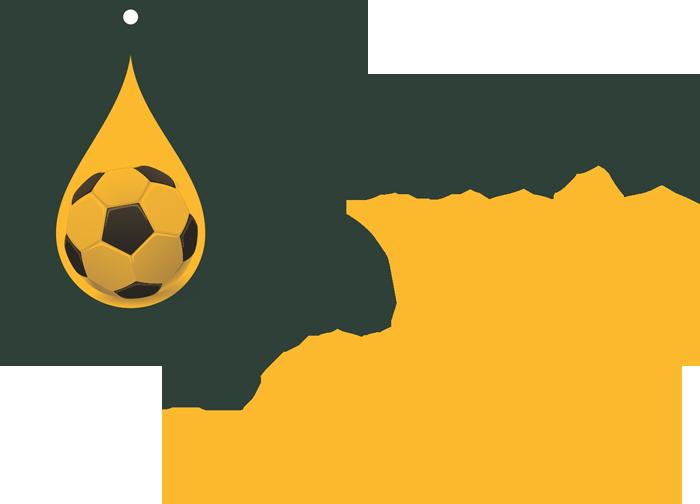 Logo: Futebol na Veia