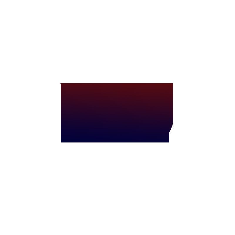 Logo: Barca Universal