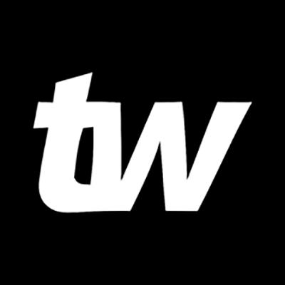 Logo: TIMÃO WEB